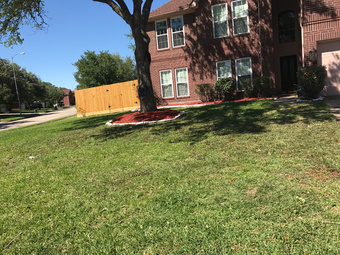 Lawn Mowing Contractor in Houston , TX, 77009