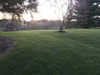 Lawn Mowing Contractor in Wilder, KY, 41076