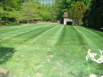 Lawn Mowing Contractor in Columbia Station, OH, 44028