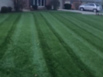 Lawn Mowing Contractor in Independence , KY, 41051