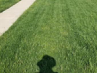 Lawn Mowing Contractor in Murfreesboro , TN, 37130