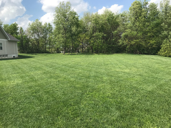 Lawn Mowing Contractor in Edwardsville , IL, 62025