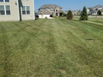 Lawn Mowing Contractor in Indianapolis, IN, 46227
