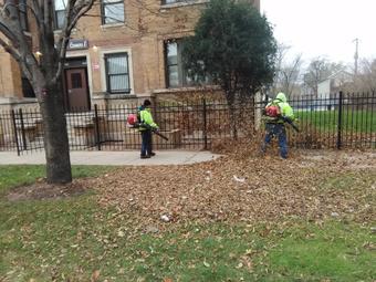 Lawn Mowing Contractor in Cicero, IL, 60804