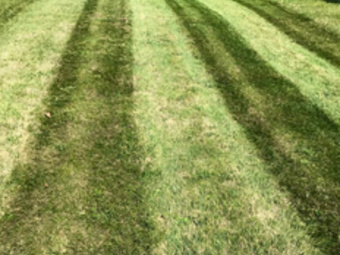 Lawn Mowing Contractor in Oakdale, PA, 15071