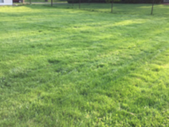 Lawn Mowing Contractor in Streamwood , IL, 60107