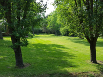 Lawn Mowing Contractor in Nashville, TN, 37218