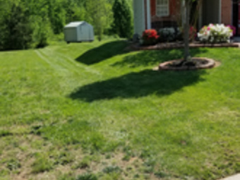 Lawn Mowing Contractor in Charlotte , NC, 28269
