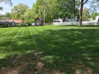 Lawn Mowing Contractor in Webster Groves, MO, 63119