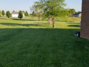 Lawn Mowing Contractor in Coxs Creek, KY, 40013