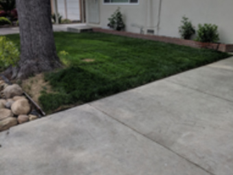 Lawn Mowing Contractor in Grayson Ca, CA, 95363