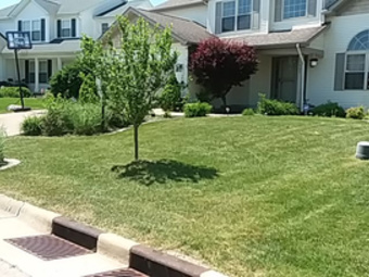 Lawn Mowing Contractor in Peoria, IL, 61605