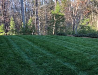 Lawn Mowing Contractor in Clover, SC, 29710