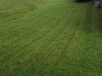 Lawn Mowing Contractor in Bethel Park, PA, 15102