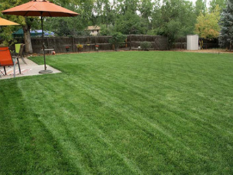 Lawn Mowing Contractor in Littleton, CO, 80127