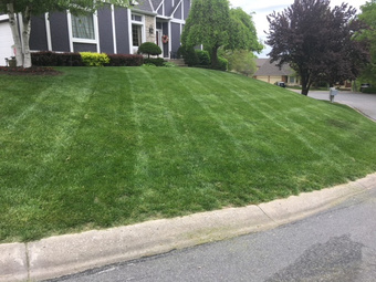 Lawn Mowing Contractor in Greenwood, MO, 64034
