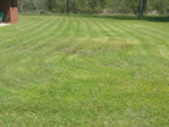 Lawn Mowing Contractor in Nashville, TN, 37217