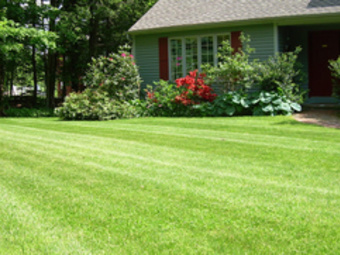 Lawn Mowing Contractor in Kansas City, MO, 64155