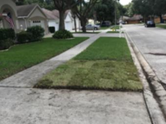 Lawn Mowing Contractor in Seminole , FL, 33777