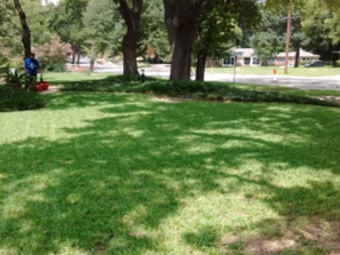 Lawn Mowing Contractor in Palmer, TX, 75152