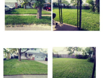 Lawn Mowing Contractor in Maple Heights, OH, 44137