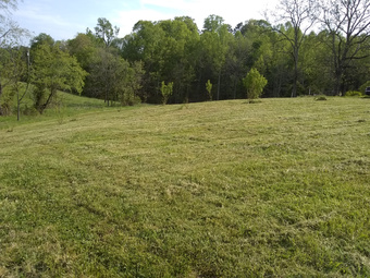 Lawn Mowing Contractor in Mount Airy, NC, 27030