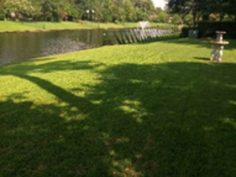 Lawn Mowing Contractor in Spring, TX, 77090