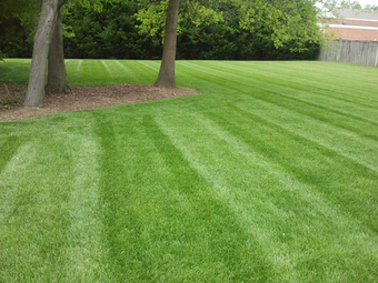 Lawn Mowing Contractor in Asheville, NC, 28715