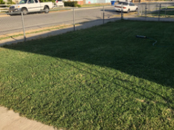 Lawn Mowing Contractor in Bakersfield, CA, 93308