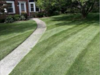 Lawn Mowing Contractor in Bedford, TX, 76022