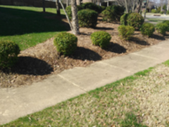 Lawn Mowing Contractor in Nashville, TN, 37064