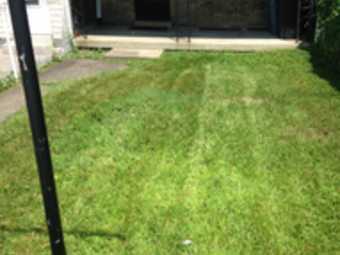 Lawn Mowing Contractor in Elizabeth , PA, 15037