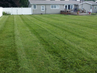 Lawn Mowing Contractor in Elwood, IN, 46036