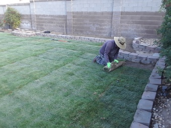 Lawn Mowing Contractor in Albuquerque, NM, 87110