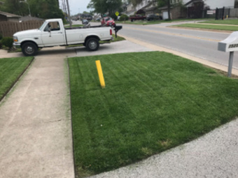 Lawn Mowing Contractor in Dolton, IL, 60418