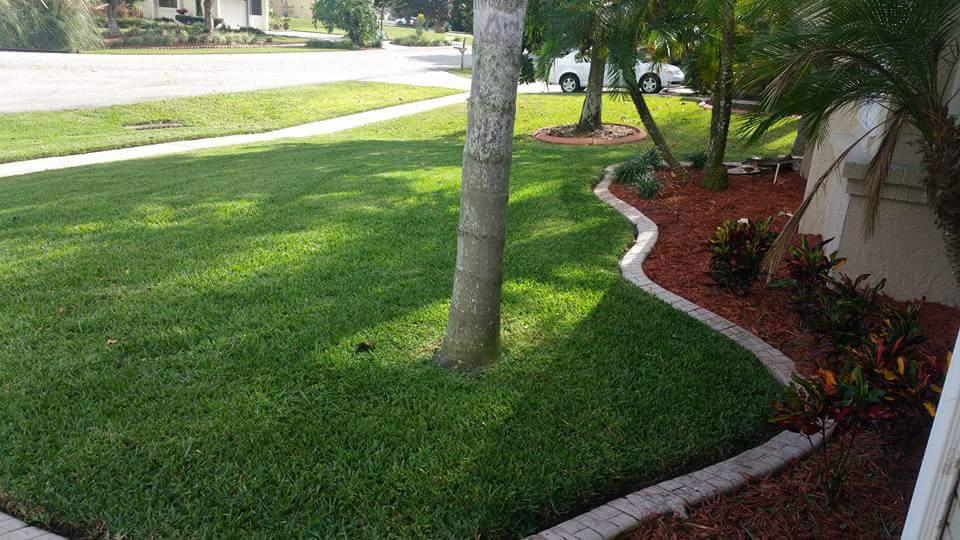 Lawn Mowing Contractor in Orlando, FL, 32836