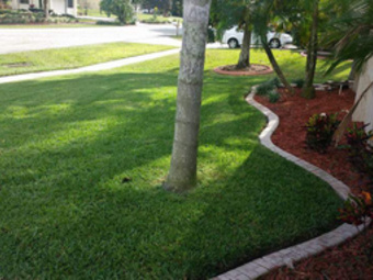 Lawn Mowing Contractor in Orlando, FL, 32837