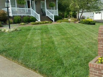 Lawn Mowing Contractor in Westminster , CO, 80021