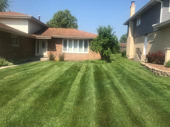Lawn Mowing Contractor in Joliet , IL, 60435