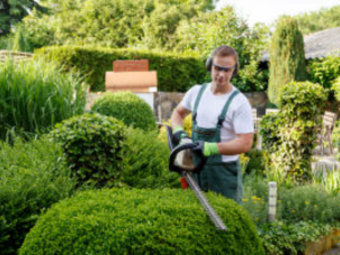 Lawn Mowing Contractor in Seattle, WA, 98118