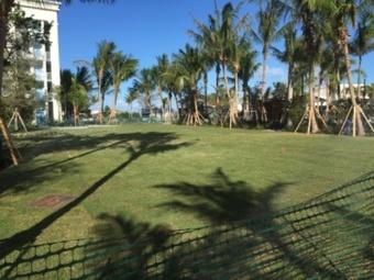Lawn Mowing Contractor in Miami, FL, 33167