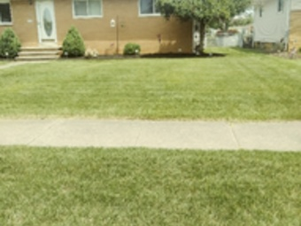 Lawn Mowing Contractor in Cleveland, OH, 44120