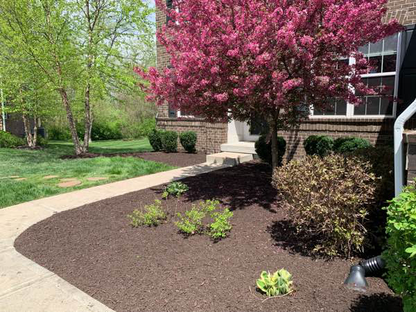 Lawn Mowing Contractor in Indianapolis, IN, 46234