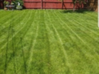 Lawn Mowing Contractor in Roselle, IL, 60172