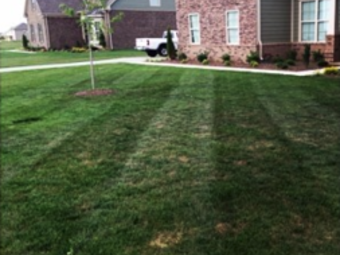 Lawn Mowing Contractor in Humboldt , TN, 38343