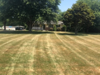 Lawn Mowing Contractor in Shady Side, MD, 20764