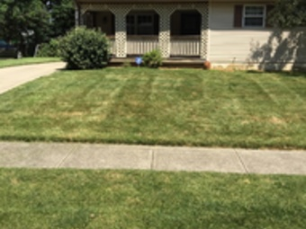Lawn Mowing Contractor in Columbus, OH, 43085