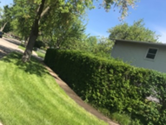 Lawn Mowing Contractor in Streamwood, IL, 60107