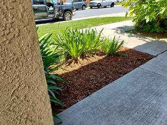 Lawn Mowing Contractor in Sacramento, CA, 95832