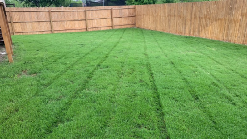 Lawn Mowing Contractor in Atascosa, TX, 78002